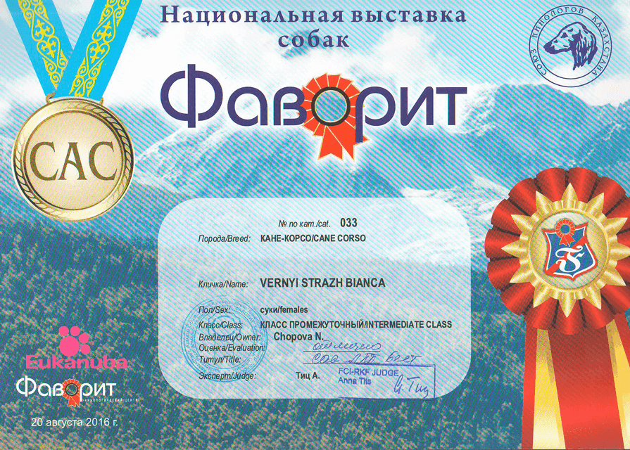 Диплом НВС Фаворит -- CAC Best oe breed 20/08/2016